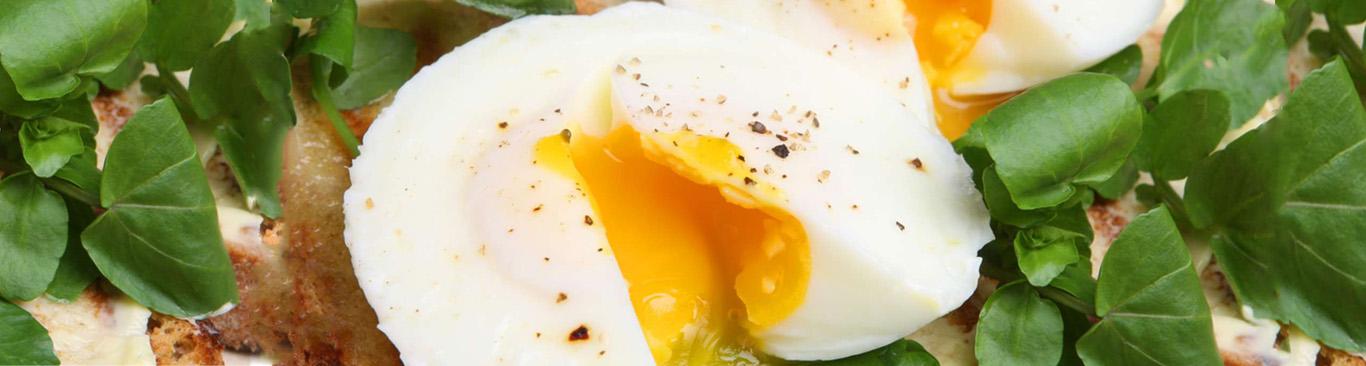 Яйцо пашот - 2 способа сервировки - простой рецепт приготовления в домашних условиях