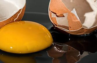 Сальмонелла бьет по яйцам