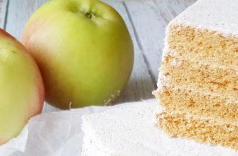 Белевская пастила из яблок в домашних условиях
