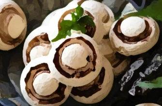 Домашнее печенье шампиньоны (0)